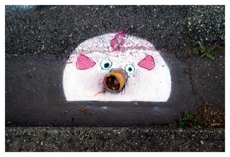 C'est de l'art ou du cochon 3